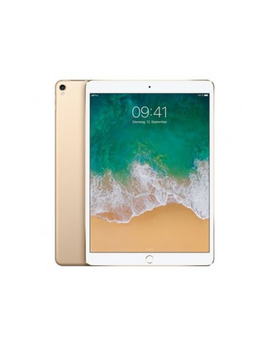 iPad Pro - 10 or
